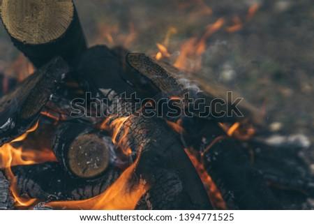 Closeup of blazing campfire coals #1394771525