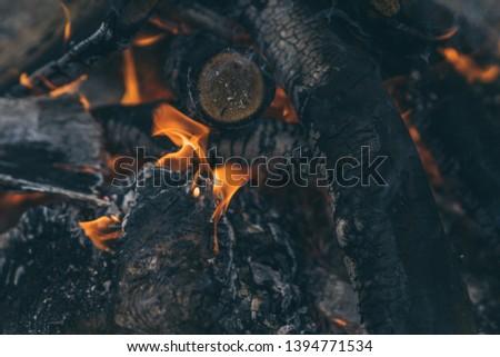 Closeup of blazing campfire coals #1394771534