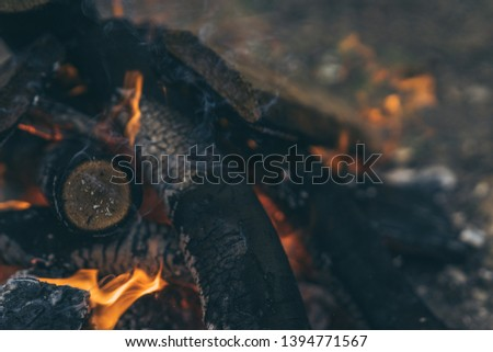 Closeup of blazing campfire coals #1394771567