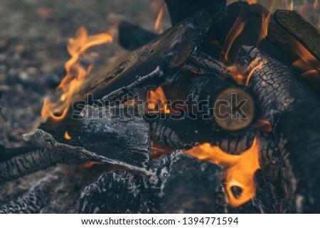 Closeup of blazing campfire coals #1394771594