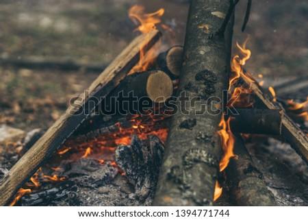 Closeup of blazing campfire coals #1394771744