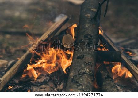 Closeup of blazing campfire coals #1394771774