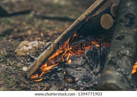 Closeup of blazing campfire coals #1394771903