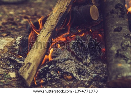 Closeup of blazing campfire coals #1394771978