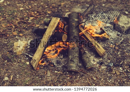 Closeup of blazing campfire coals #1394772026