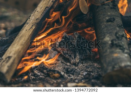 Closeup of blazing campfire coals #1394772092