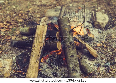 Closeup of blazing campfire coals #1394772125