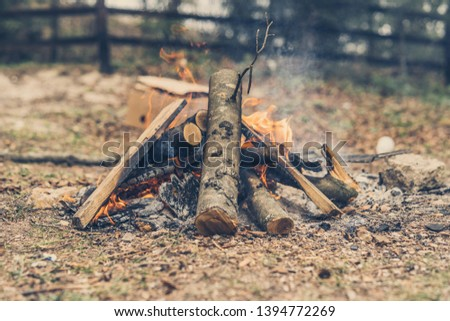 Closeup of blazing campfire coals #1394772269