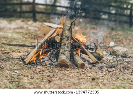 Closeup of blazing campfire coals #1394772305