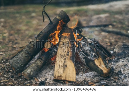 Closeup of blazing campfire coals #1398496496
