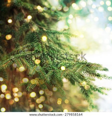 Closeup of Christmas-tree #279858164