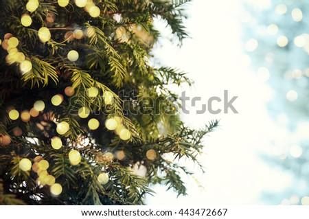 Closeup of Christmas-tree #443472667