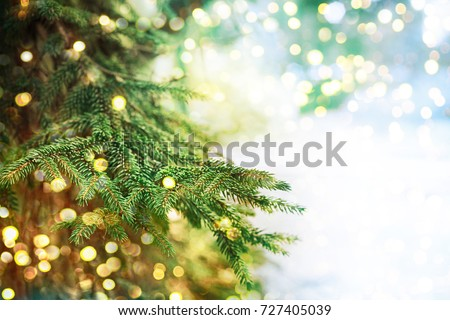 Closeup of Christmas-tree #727405039