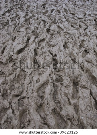 Closeup of country muddy background with deep human footprints - stock photo