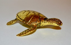 Closeup of Detailed Golden Metal Turtle Ornament Against White Background