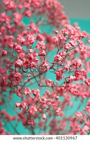 Free photos pink babys breath flowers in the garden avopix closeup of dry pink babys breath flowers gypsophila paniculata over green background shot mightylinksfo