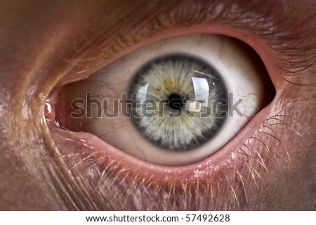 closeup of eye - stock photo