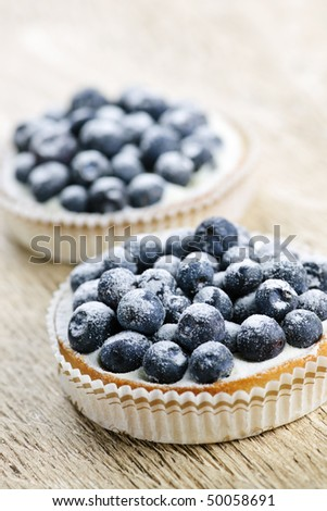 Closeup of fancy gourmet fresh blueberry dessert tarts