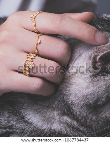 closeup of female woman with golden rings stroking cat #1067784437