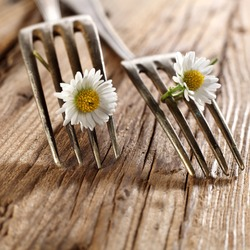 closeup of forks