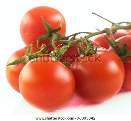 Closeup of fresh cherry tomato on a branch over white background.