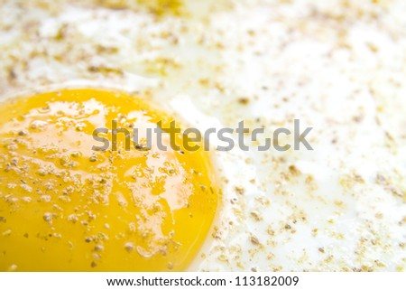 closeup of fresh fried egg
