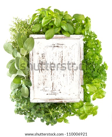 closeup of fresh herbs with wooden board for your text. marjoram; parsley; basil; rosemary; thyme