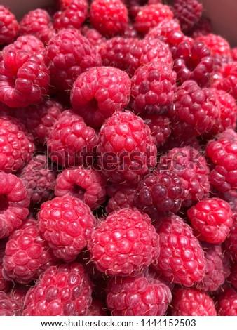 Closeup of freshly picked organic raspberries UK