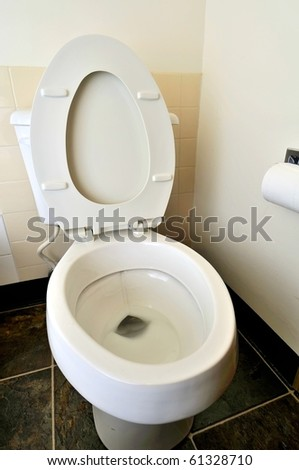 Closeup of generic toilet seat and bowl. For hygiene and cleanliness concepts.