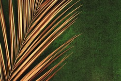 Closeup of golden palm leaf on abstract dark green textured background. Tropical conceptual luxury elegant trendy art deco summer background. Flat lay. Open composition, copy space.