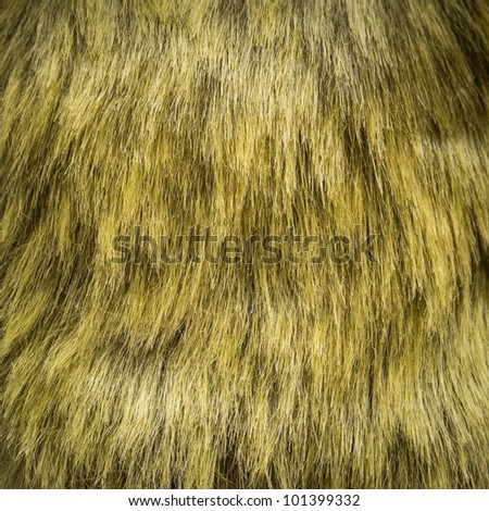 Closeup of green fur for background or texture