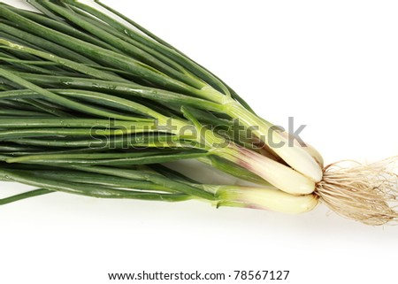 Closeup Of Green Spring Onion Vegetable on white background