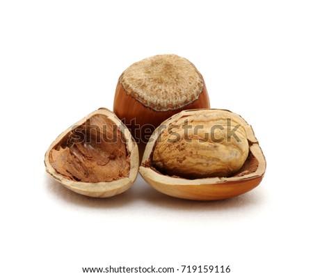 Closeup of hazelnuts isolated on the white background. #719159116