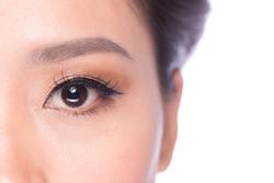 Closeup of human eye. Closeup shot of woman eyes with day makeup