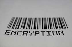 Closeup of isolated fictional bar code with word encryption, white background (focus on letter P)