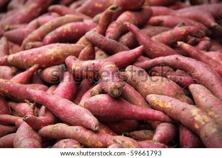 Closeup of Japanese potatoes sell at a farmers market