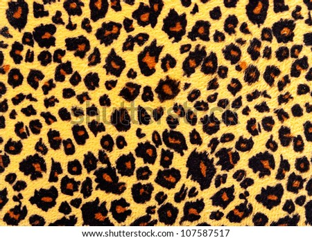 Closeup of leopard skin texture fur. #107587517