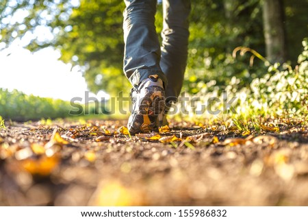 Closeup of male legs hiking in nature