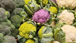 Closeup of Many Head of Broccoli, Green Cauliflower, Purple Broccoflower and White Cauliflower on display shelf on sales for customer to choose. Fresh Organic Vegetables for background.