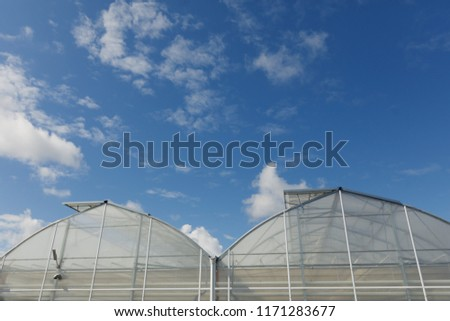 closeup of modern greenhouse complex against blue sky. wide angle view. #1171283677