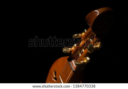 Closeup of mountain dulcimer head and tuning pegs. #1384770338