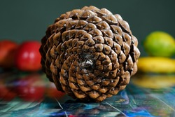 closeup of natural pine cone viewing fibonacci spirals bilding golden ratio on reflecting table