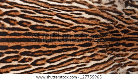 closeup of ocelot fur coat texture