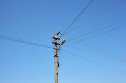 Closeup of old power pillar on a summer day. Power line post with electricity cables against a clear blue sky