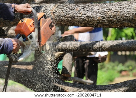 Closeup of orange chain-saw using by elderly lumberman to cut the tree in bright sunny day. Stock photo ©