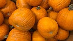 Closeup of pile of pumpkins