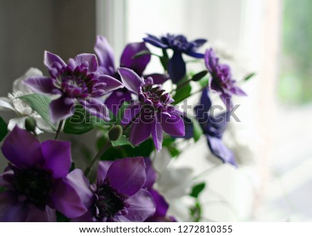 Windows and bouquet of flower Images and Stock Photos - Page: 2