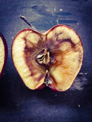 Closeup of rotten apple on wood background