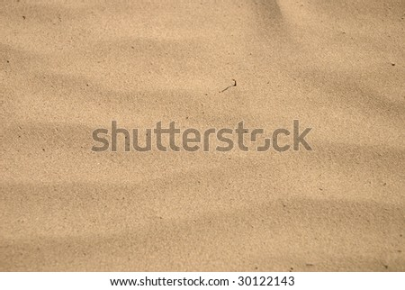 Closeup of sand background on the beach