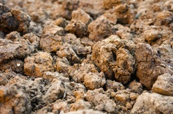 Closeup of small divots of argillaceous earth and dry hard soil in a ploughed piece of land in Southern France